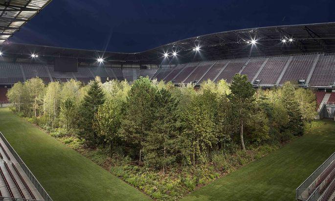 """Vielleicht ist Trump über das Klagenfurter Stadion auf den """"Austrian Forest"""" gekommen. Nur hat ihm niemand gesagt, dass das ein Kunstprojekt war."""