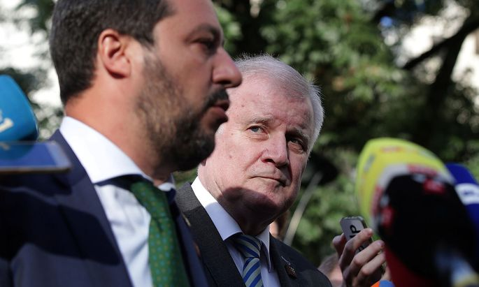 Italy's Matteo Salvini and Germany's Horst Seehofer are seen during a statement ahead of an informal meeting of EU's Home Affairs Ministers in Innsbruck