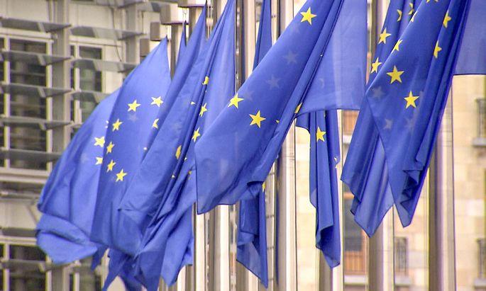 Wir sind Praesident - Oesterreichs langer Weg nach Europa