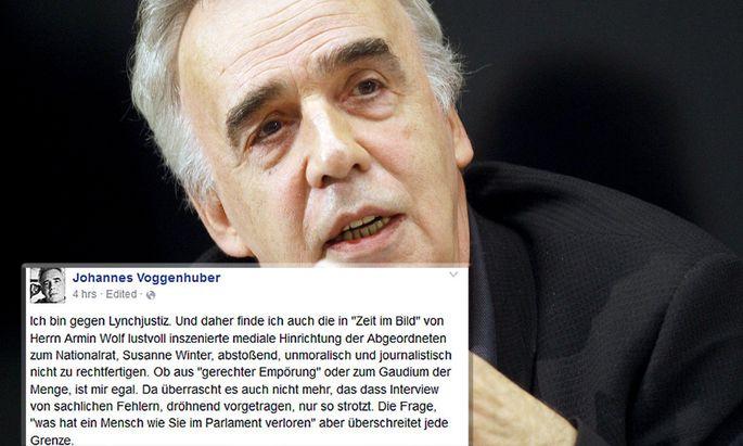 Johannes Voggenhuber und sein Posting auf Facebook