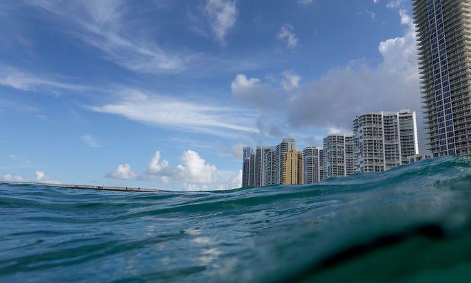 Hier in Florida haben die Vereinten Nationen im Sommer ihre letzte verheerende Prognose für das Weltklima präsentiert.