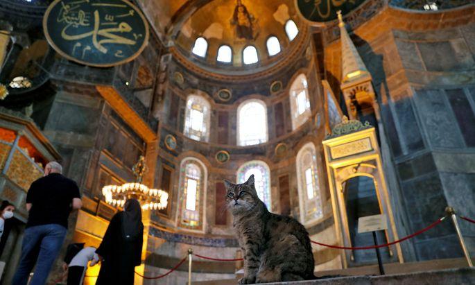 Umwandlung der Hagia Sophia: Erstes Freitagsgebet seit 86 Jahren - mit Erdogan