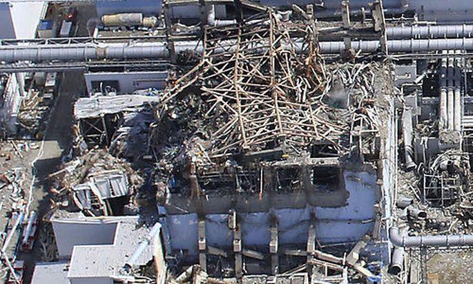 Fukushima Trummer Harz