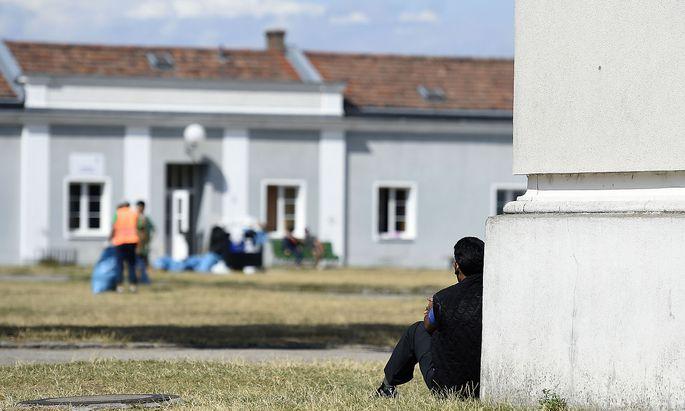 Asyl gegen Geld: In Traiskirchen soll ein Beamter für Schutz durch die Republik bis zu 2500 Euro verlangt haben.