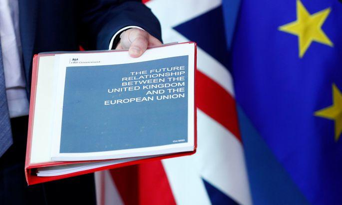 Am Freitag wird Barnier den Mitgliedstaaten bei einem Ratstreffen in Brüssel (Vorsitz führt Europaminister Gernot Blümel) die seiner Ansicht nach realistischen Varianten für den Ausgang der Verhandlungen vorstellen.