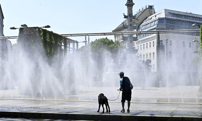 Der Rekordsommer könnte in Wien zur Normalität werden.