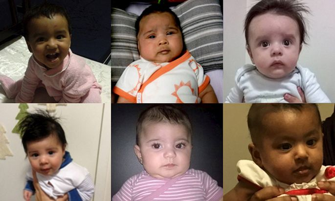 An undated combination, handout picture shows some of the babies born in Australia to asylum seeker mothers who face deportation to one of Australia´s controversial offshore asylum seeker detention centres on the Pacific Island of Nauru