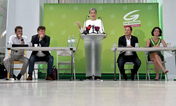 Spitzenkandidatin Ulrike Lunacek beim Erweiterten Bundesvorstand der Grünen