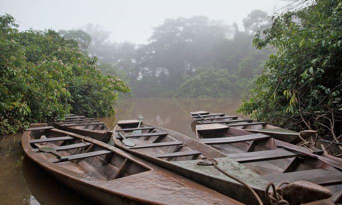 Handgeschnitzt. Flüsse sind die Lebensadern im Amazonas-Regenwald.