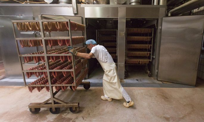 Viele Osteuropäer bekommen in Deutschland Jobs, die unter ihrer Qualifikation liegen – wie hier in einer Wurstfabrik.