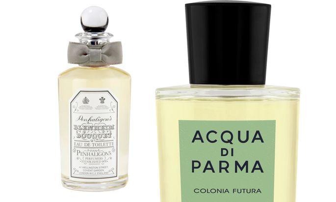 "Gewürzstrauß. ""Colonia Futura"" von Acqua di Parma (50 ml um 76 Euro), ""Blenheim Bouquet"" von Penhaligon's (50 ml um 91 Euro)."