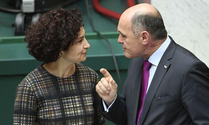 Alev Korun fordert von Innenminister Wolfgang Sobotka einen Abschiebungsstopp