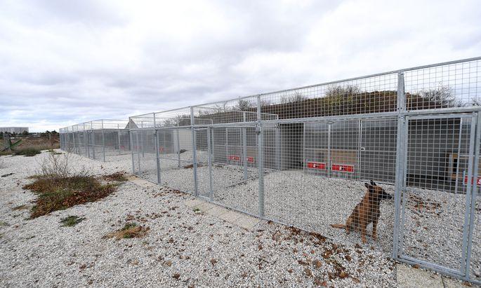 Hundezwinger auf dem Gelände der Wiener Neustädter Flugfeld-Kaserne