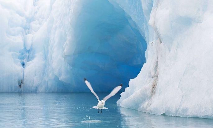 Wiener Forscher wiesen in arktischen Eisbohrkernen eine bronzezeitliche Schwermetallkonzentration nach.