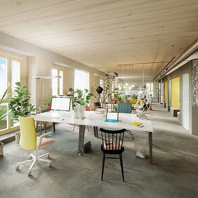 Um Coworking Spaces kommen neue Projekte nicht mehr herum, auch nicht das HoHo in Wien Aspern.