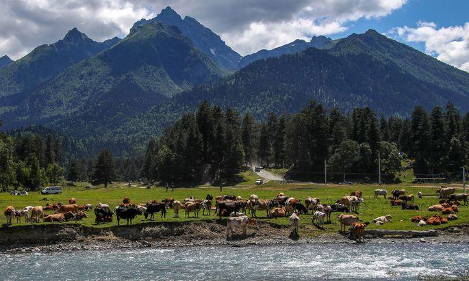 Der Nordkaukasus ist gesegnet mit hohen Bergen, heilenden Quellen und beeindruckenden Wasserfällen.