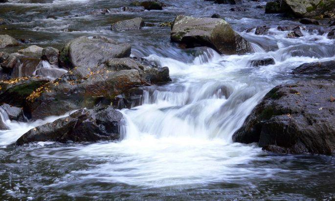 Bach mit Steinen und fliessendem Wasser