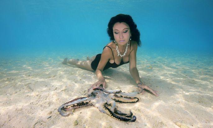 ´Inniges Einvernehmen´ mit dem Oktopus? Wenn wir den Kraken suchen, suchen wir unsere eigene Stellung im Universum.