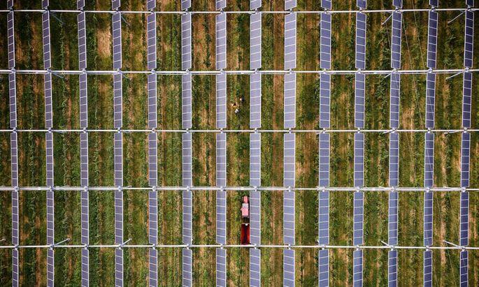 Solarpaneele im Weingarten. Mit dem Ausbau der Erneuerbaren alleine wird Österreich seine Klimaziele nicht erfüllen.