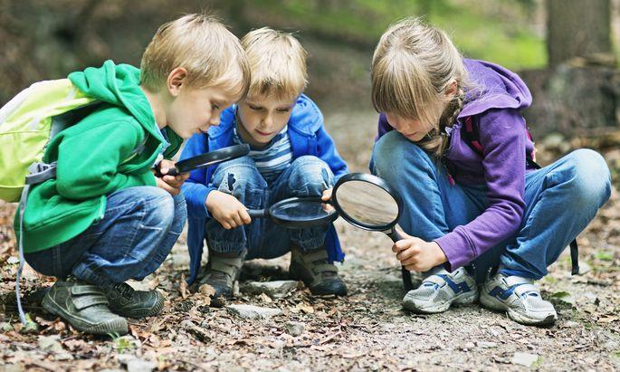 Besonders bei Kindern und Jugendlichen soll Interesse am Wald und an Zusammenhängen in der Natur geweckt werden.