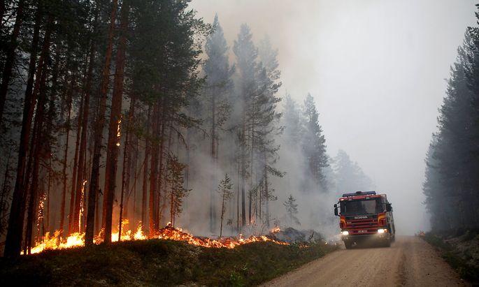 In Ljusdal tobt einer der größten Waldbrände.