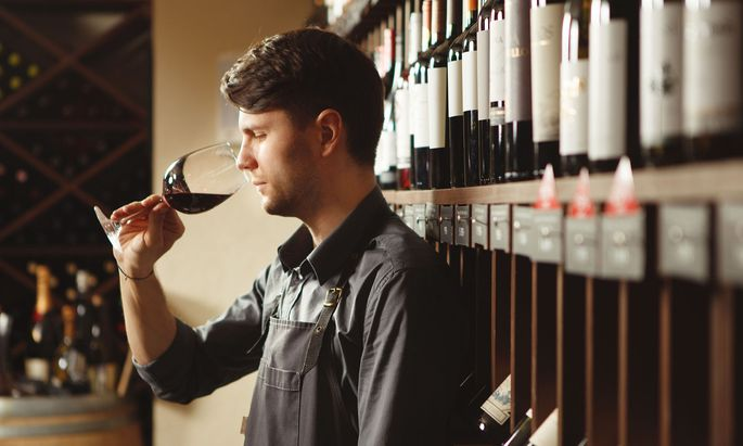 Bartender stands in cellar and smells wine in glass