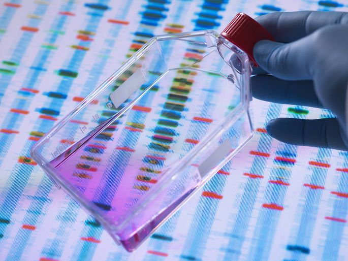In allen Organismen gibt es laufend zufällige Mutationen im Erbgut.