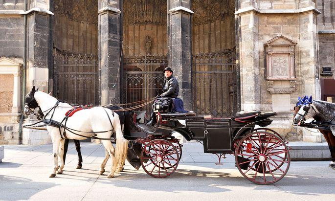 Fiaker Andreas Horvath mit seinen Pferden Lord und Pavarotti beim Standplatz neben dem Stephansdom.