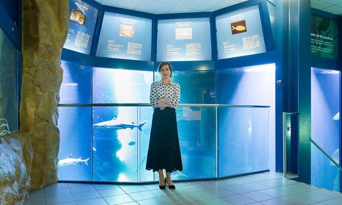 In ihrer Forschung befasst sich Alice Vadrot mit Verhandlungen zum Schutz der Hochmeere. In der Freizeit besucht sie gern das Haus des Meeres.