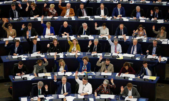 """Das EU-Parlament stimmte für den """"Klimanotstand""""."""