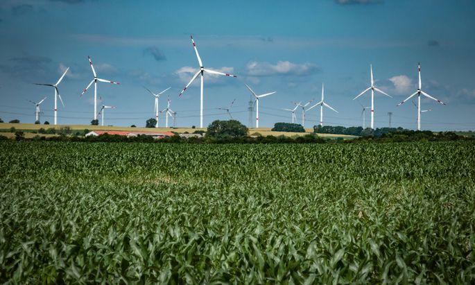 Klimaschutz und grüne Technologien sind bei Investoren aktuell beliebte Themen.