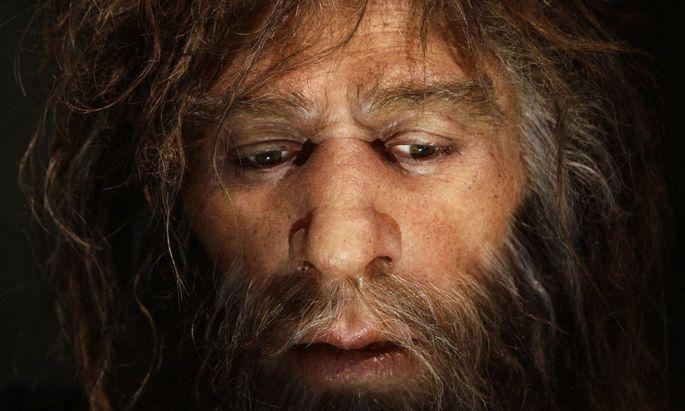 Palöontologen haben festgestellt, dass unterschiedliche Urmenschen-Völker über große Distanzen hinweg aufeinander trafen