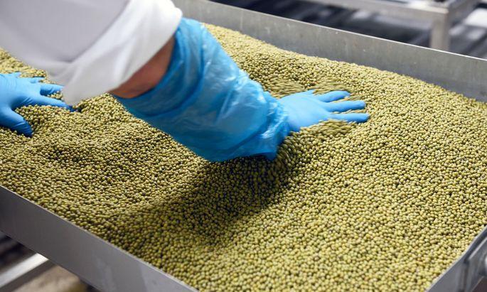 Die Nachfrage nach heimischen Bio-Sojabohnen steigt