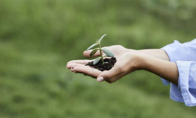 In Österreich sind Humusgehalt und Nährstoffversorgung in den Ackerböden ausreichend hoch.