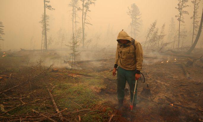 Die Taiga brennt: Verheerende Wald- und Torfbrände in Sibirien arteten in diesem Sommer in eine Umweltkatastrophe aus.