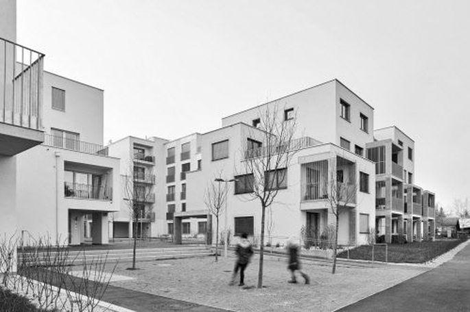 Wie in einer Weinviertler Hintaus-Gasse: die Siedlung MGG22 in der Stadlauer Mühlgrundgasse. Auf drei Grundstücken finden sich . . .