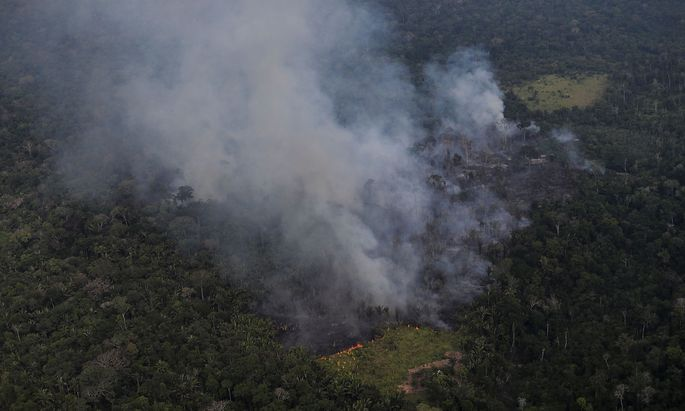 Smoke billows from a fire in an area of the Amazon jungle as it is cleared by loggers and farmers near Porto Velho, Rondonia State