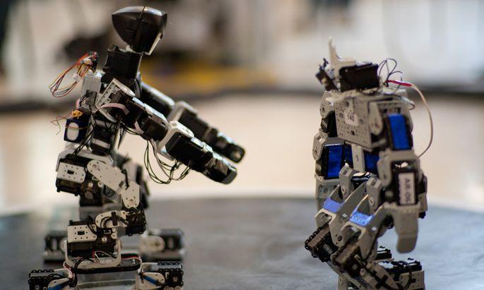 Polen dominiert RobotChallenge 2013 in Wien