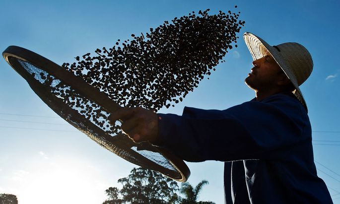 FILES-BRITAIN-BRAZIL-AGRICULTURE-COFFEE-MARKET