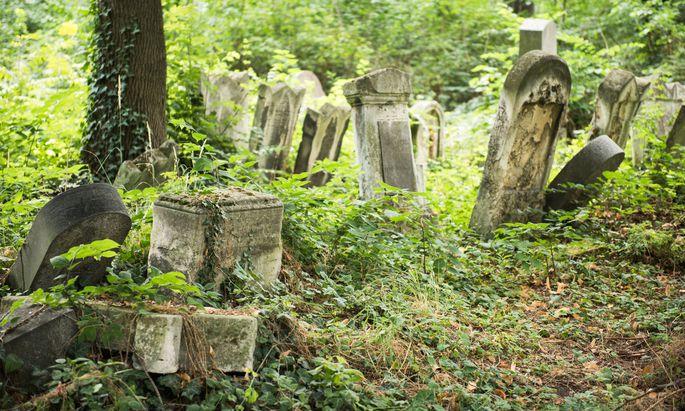 Der vergessene jüdische Friedhof in Währing ist ein Biedermeierjuwel – das zusehends verfällt.