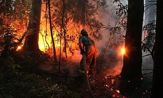 Waldbrand Russland