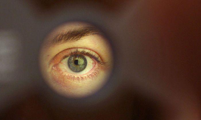 Biometrische Daten wie etwa aus Iris-Scans spielen in der Terror-Datenbank eine wesentliche Rolle