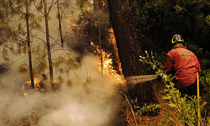 Waldbraende Chile Bereits 40000