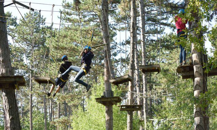 Auf dem Waldklettergarten kann man – gut gesichert – neun verschiedene Parcours in einer Höhe zwischen vier und elf Metern absolvieren.