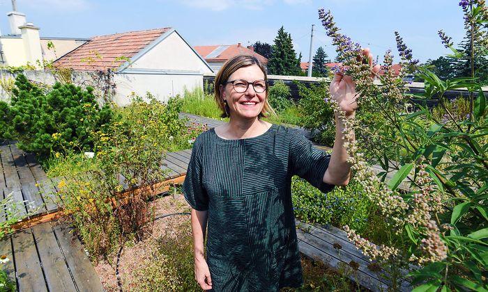 """Sylvia Schlagintweit im Kräutergarten auf der Apotheke """"Zum Löwen von Aspern""""."""
