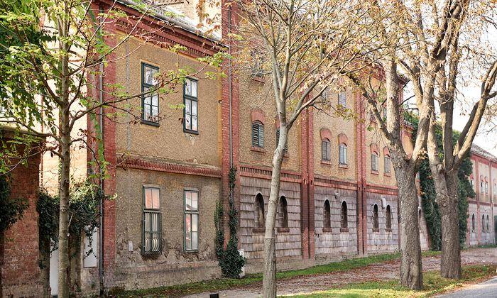 Außenansicht Haschahof in der Rosiwalgasse 41-43 in Wien.