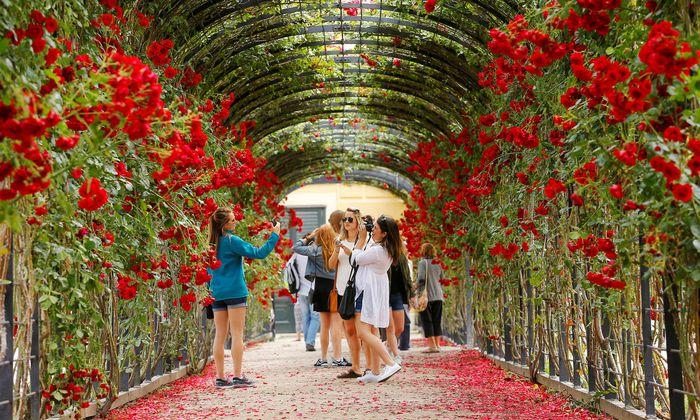 An manchen Orten werden Wege durchs touristische Wien für Anrainer schon jetzt zum Spießrutenlauf – etwa in Schönbrunn.