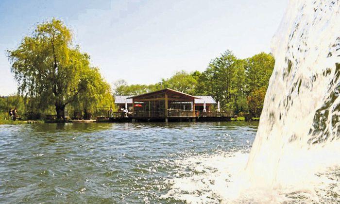 Die Wechselforelle in Trattenbach: zwei Fischteiche und ein Restaurant.