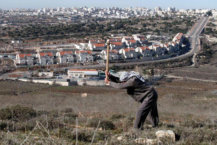 Palästinensischer Bauer auf seinem Feld nahe einer jüdischen Siedlung