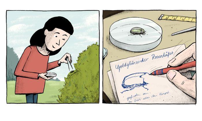 """Im Comic """"Die Superkäfer"""" kämpft Sarah gegen den Einsatz von Pestiziden."""